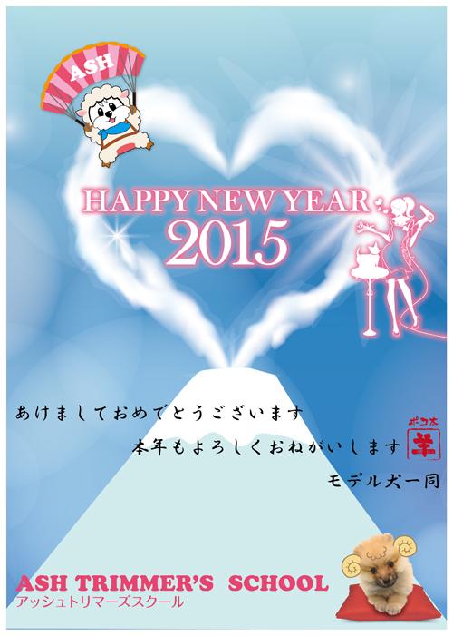 2015newyearinfo.jpg