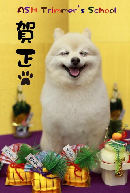 賀正ポストカードschool-01.jpg