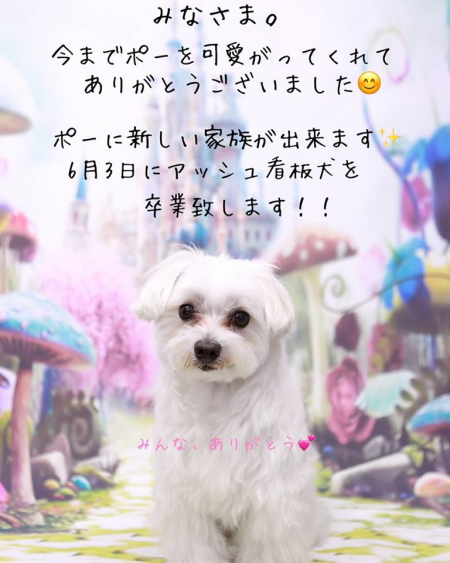 626_000634_0001.JPG